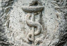 Healing Snake